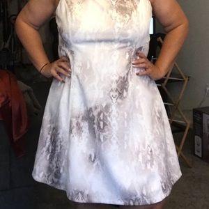 Calvin Klein A line dress 18W white w/ snake